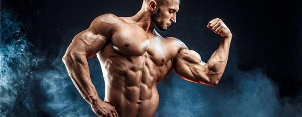 utilisation des stéroïdes en musculation