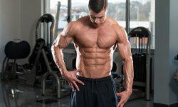 prendre du muscle stéroïdes